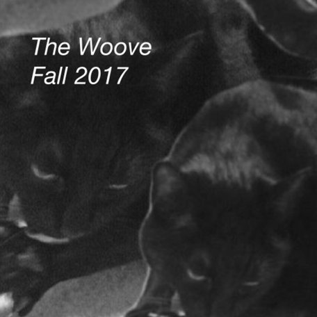 woove_fall_2017_logo